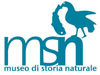 Melanoleuca umbrinella - ultimo messaggio di MSN-VE